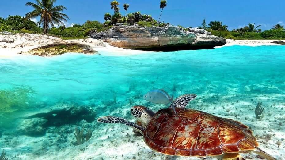 Principales puntos turísticos de Cancún