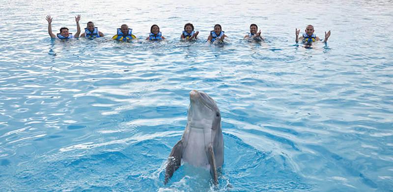 Atracción nado con delfines en el Parque Chankanaab Beach Adventure Park en Cancún