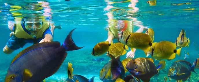 Atracción buceo en el Parque Chankanaab Beach Adventure Park en Cancún