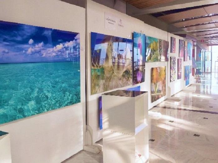 Galería Balance Cancún: Visita